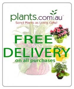 plants.com.au